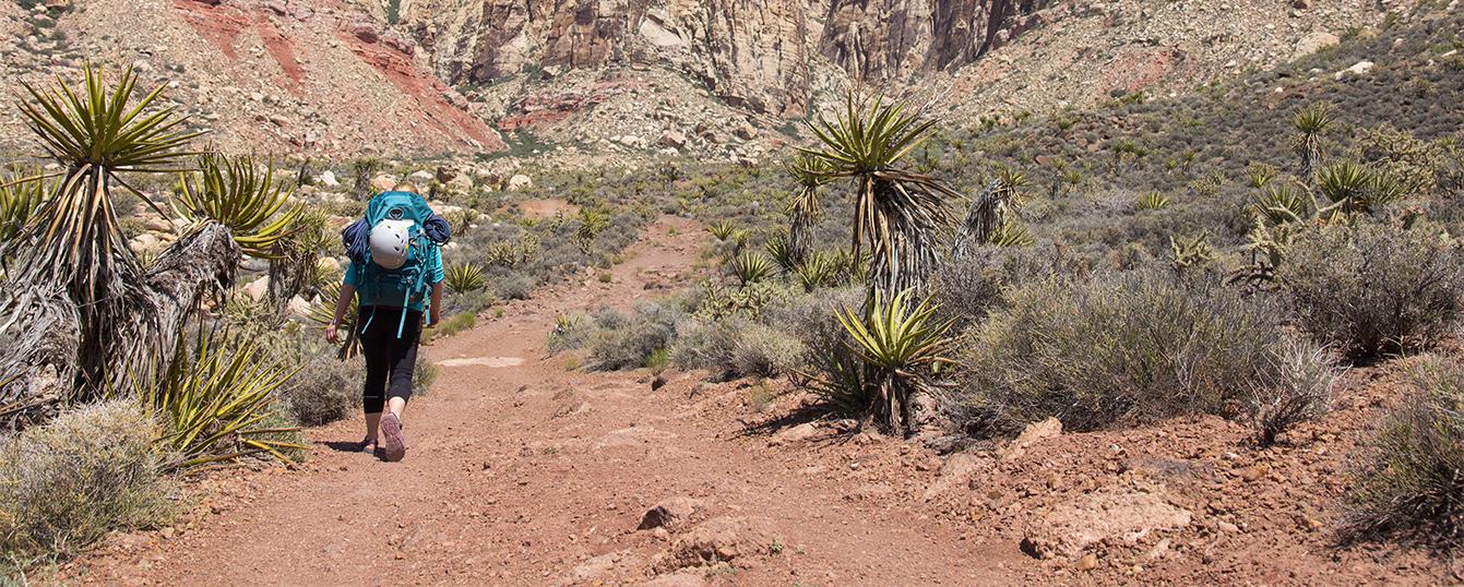 OA-Big-Bend-Hiking-the-Chisos-Basin-Trip