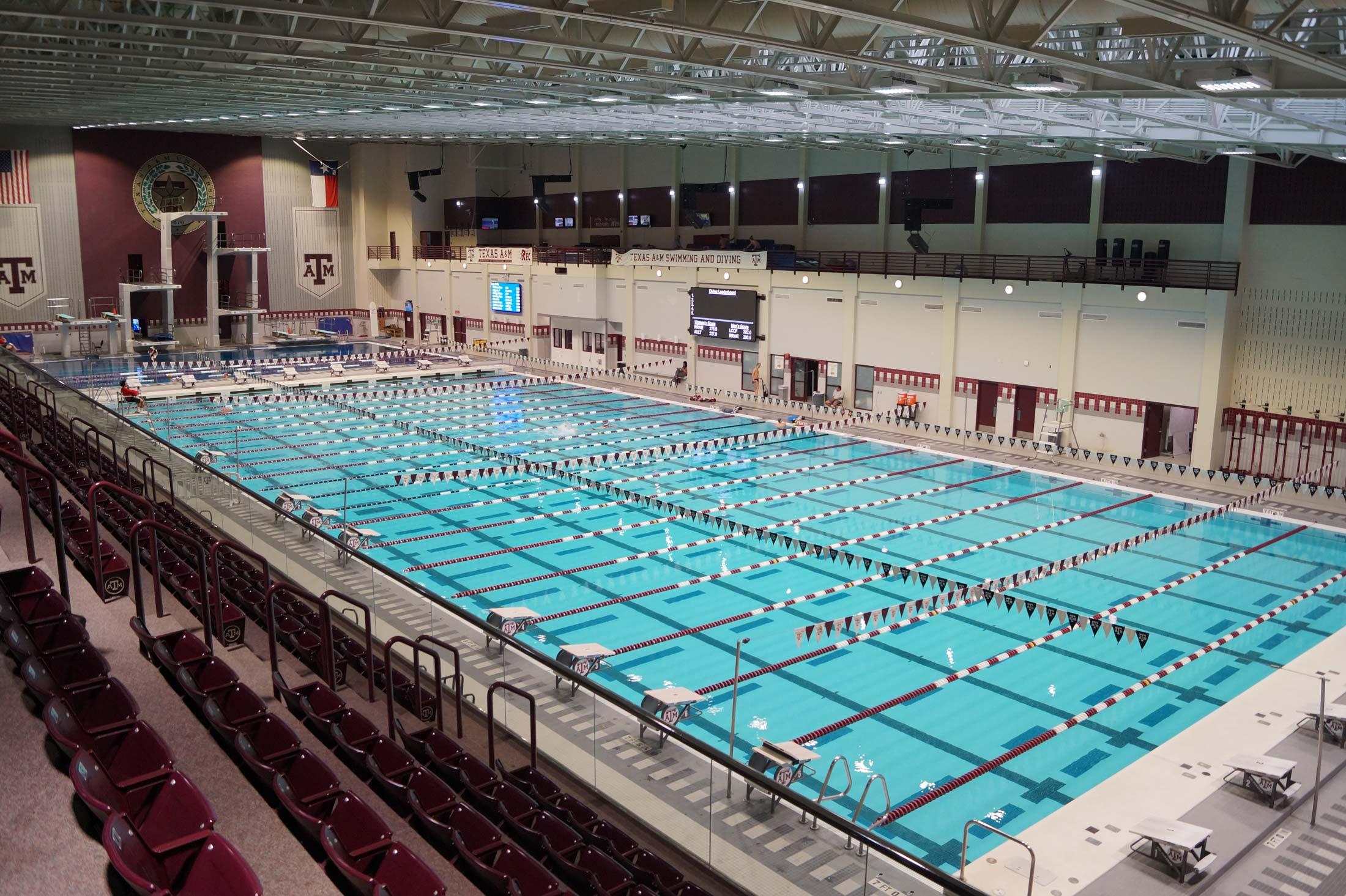 Aquatics Texas A Amp M Rec Sports